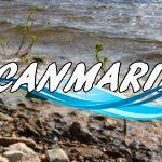 ВКрасноармейском районе Волгограда открыли первый городской пляж